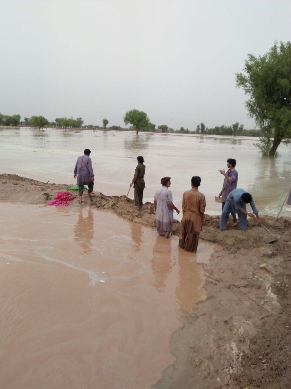 At Field Water Management Kot Kaisrani Spate Irrigation